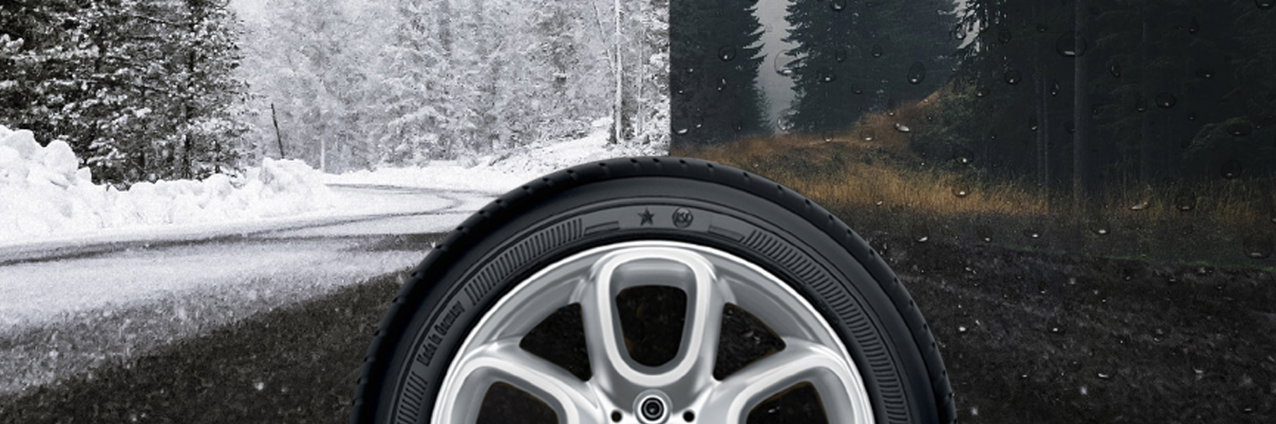 2020 Feb Cold Weather Tires