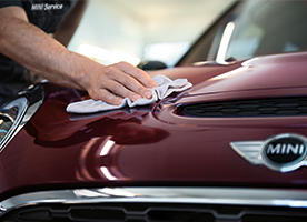 DETAILING & DISINFECTANT TREATMENT